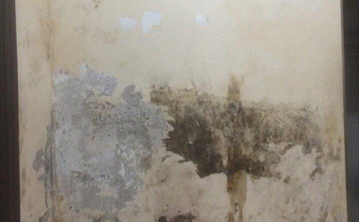 cách xử lý giấy dán tường bị hỏng để sơn