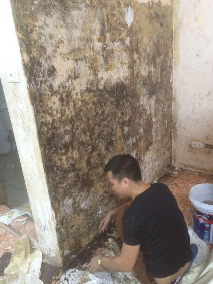 xử lý giấy dán tường